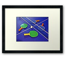 Playing Partners Framed Print