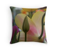 Coming from Behind Throw Pillow