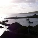 Dawn In Mevagissey Cornwall by Jan Carlton