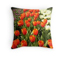 Purple, Red and White Throw Pillow