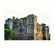 Newark castle Art Print