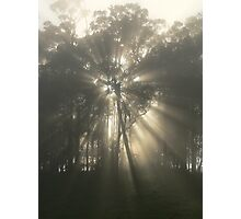 Star Of The Morn - Lansdowne Photographic Print