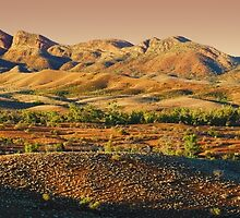 Elder Range, Flinders Ranges, South Australia by Michael Boniwell