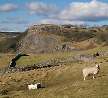 Lazy Dales Afternoon by Glen Allen
