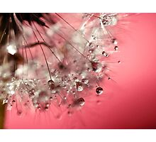 New Year's Pink Champagne - Happy New Year! Photographic Print