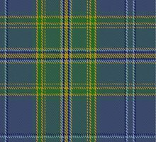 00428 All Ireland Blue District Tartan  by Detnecs2013