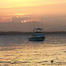 The Fishing Boat Returns by Leslie van de Ligt