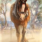 The Clydesdale by Trudi's Images