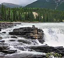 Athabasca Falls by Erika Price