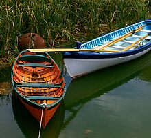Wooden boats by Dennis Wetherley