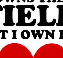 boyfriend owns the field but i own his heart baseball Sticker