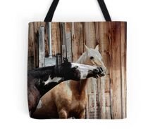Two Paints Horse Equine Artwork Tote Bag