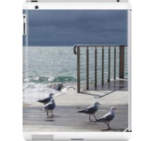 the light!  at Burnie beach, with silver gulls iPad Case/Skin
