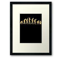 Evolution Ape To Geek Framed Print