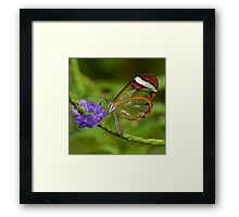 Stained Glass...... Framed Print