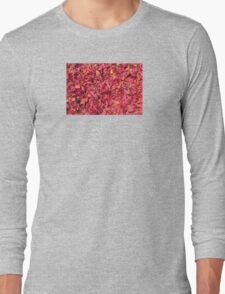 Arils Of Mace, George Town, Malaysia Long Sleeve T-Shirt