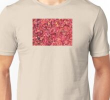 Arils Of Mace, George Town, Malaysia Unisex T-Shirt