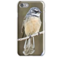 Grey Fantail - Anakie Gorge iPhone Case/Skin