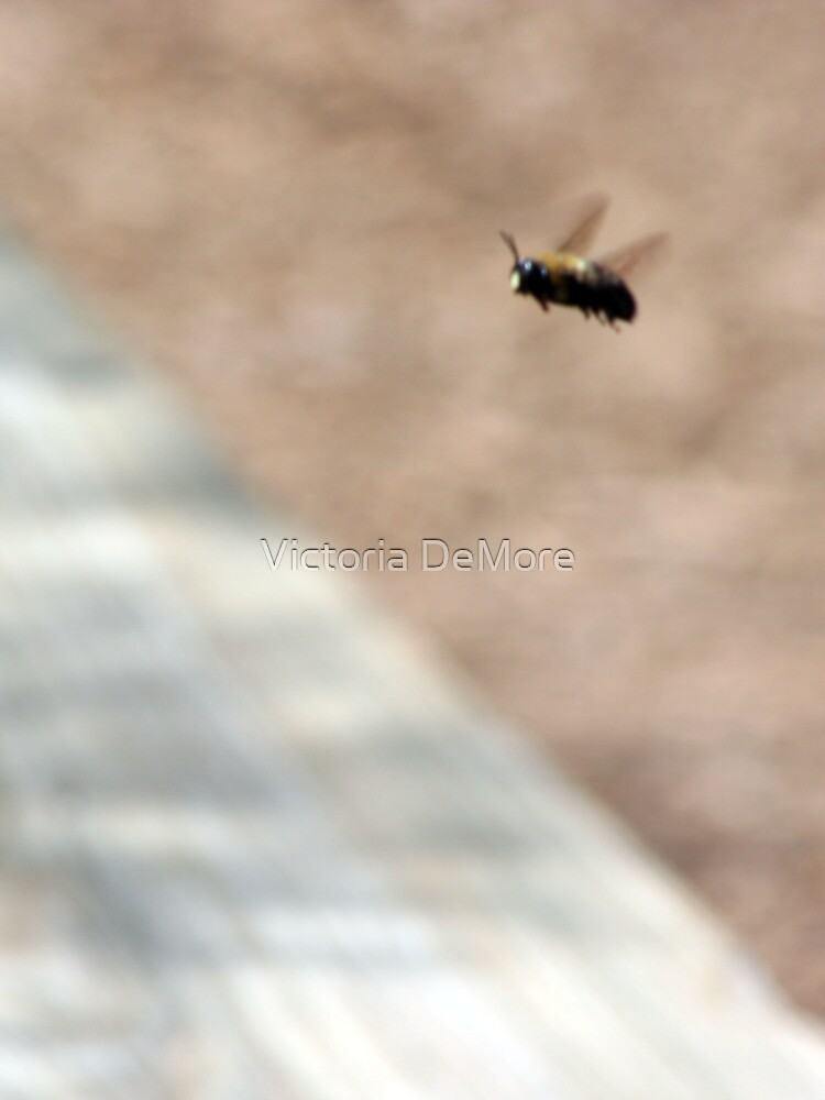 Bumble Bee Fly By by Victoria DeMore