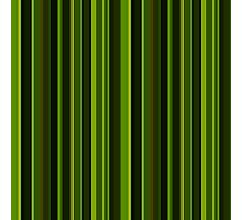 Forest stripes Photographic Print