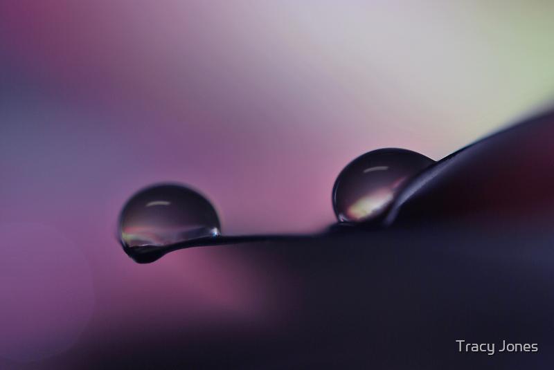 Purple Fantasy by Tracy Jones