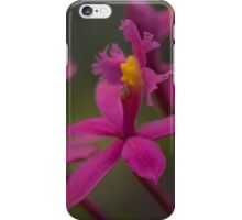 Australian native orchid (pink) iPhone Case/Skin