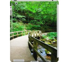 Path of Enlightenment iPad Case/Skin