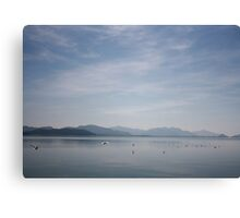 Seagulls on Koycegiz Lake Canvas Print