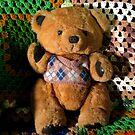 Terry Bear by Linda Miller Gesualdo