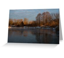 Gray and Amber - an Early Winter Morning on the Lake Shore Greeting Card