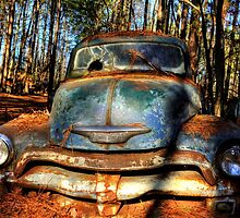 The Truck In The Woods by Greg and Chrystal Mimbs