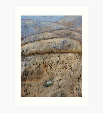 Bushfire II Art Print
