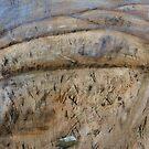 Bushfire II by jp5040