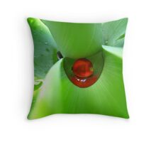 Natures Treasure Chest Throw Pillow