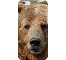 Brutus the Grizzly Film Star iPhone Case/Skin