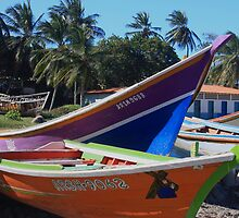 Venezuelan Fishing Boats by Rob Diffenderfer