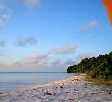 Palm Tattoo, Cocos Islands by Robert La Bua