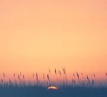 Sunset over the gulf by Roger Otto