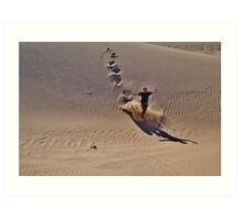 Dune plunge Art Print