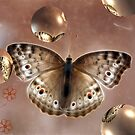 Moth and Bubbles by Kimberly Palmer