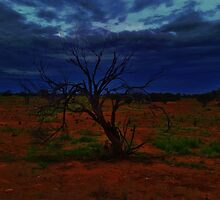 outback by AlwaysCapture
