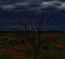 Outback..3 by AlwaysCapture