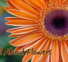All About Flowers Logo by DiEtte Henderson