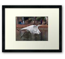 Water Ballet Framed Print