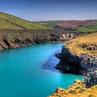 Port Quin Cornwall by David Wilkins
