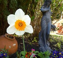 Spring Has Sprung! by Vicki Spindler (VHS Photography)