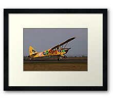 Fake Landing Framed Print