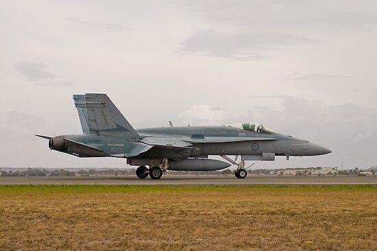 F/A-18 Hornet by Frank Yuwono