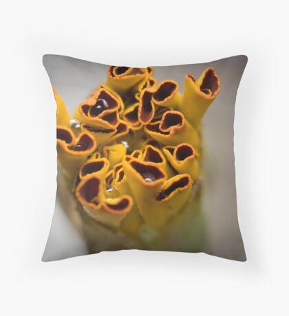 New Marigold Throw Pillow