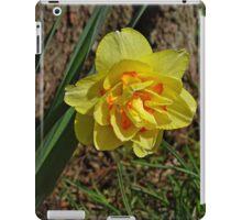 Double Daffodil iPad Case/Skin